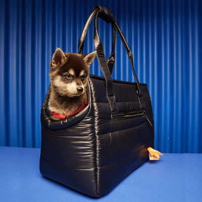 Weekend Tote Dog Carrier - Limited Edition