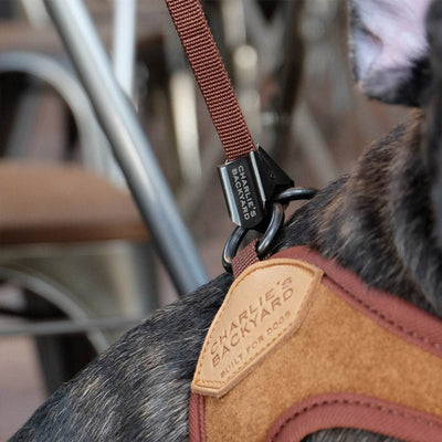 Adjustable Easy Harness - Brown