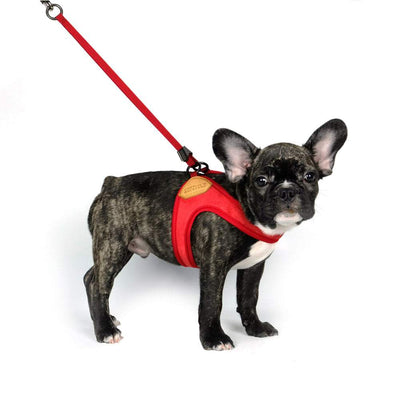 Adjustable Easy Harness - Red