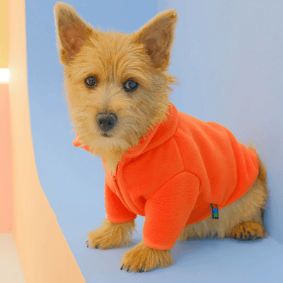 Carrot Fleece Sweater Clothing Hey Jerry