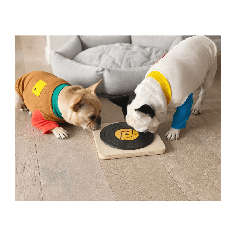Dog Turntable Nosework Puzzle Toy Huts and Bay