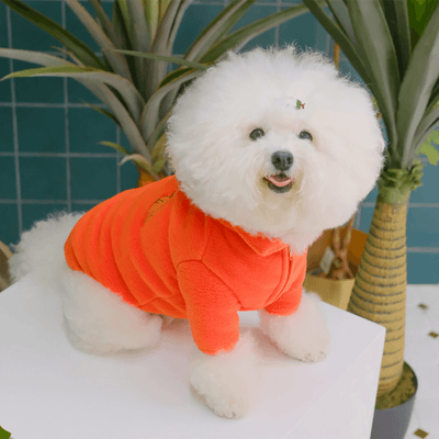 Carrot Fleece Sweater