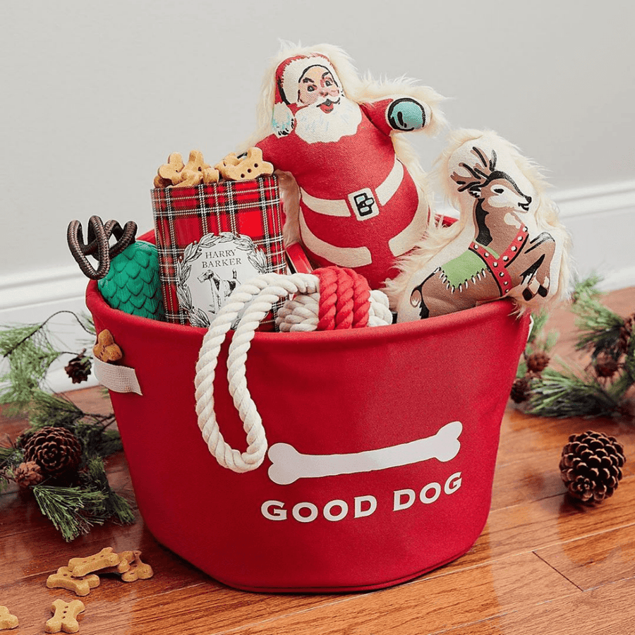 Santa Canvas Dog Toy