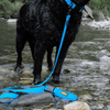 DeWater Waterproof Leash - Blue