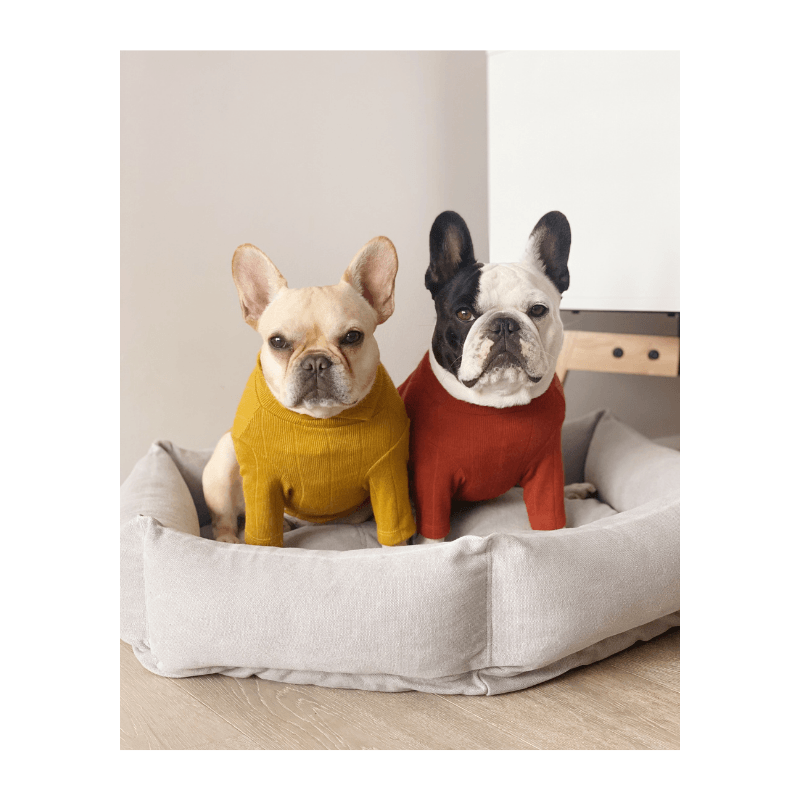 HB Collar Knit Mustard Clothing Huts and Bay