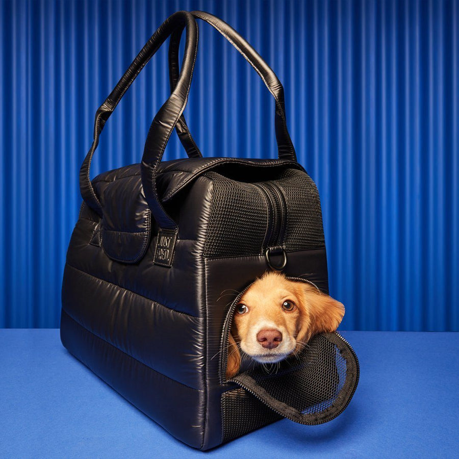 Destination Tote Dog Carrier - Limited Edition