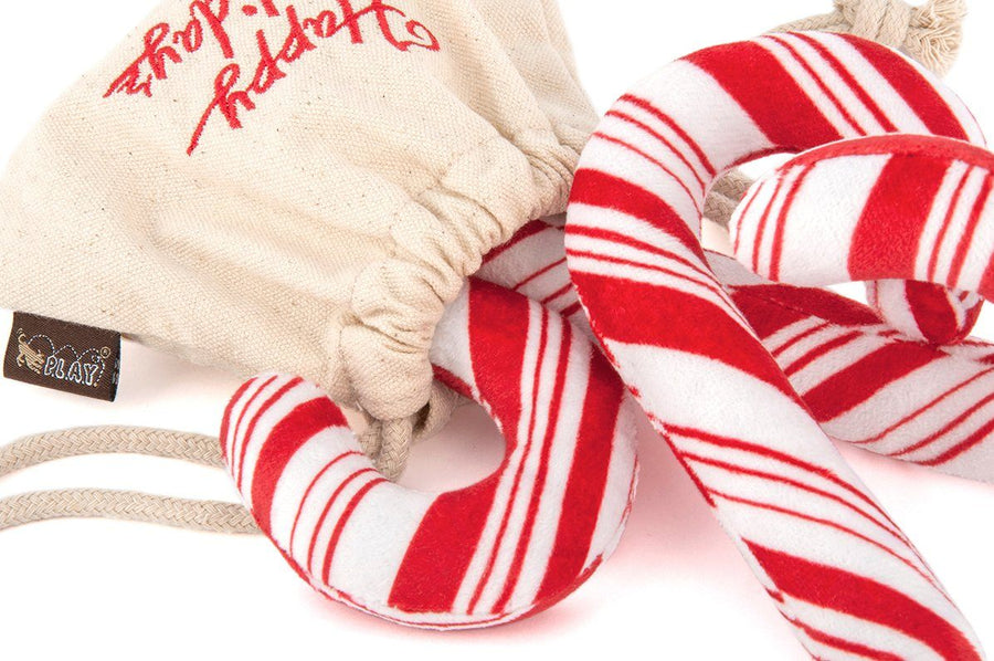Candy Canes Holiday Dog Toy