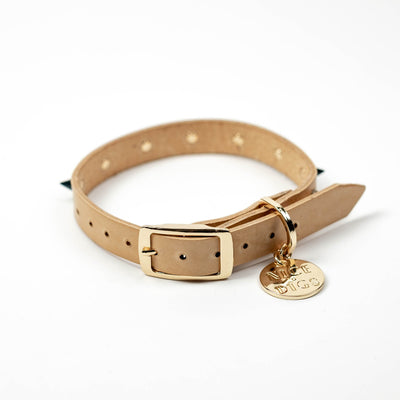 Spike Dog Collar - Jaded Rose