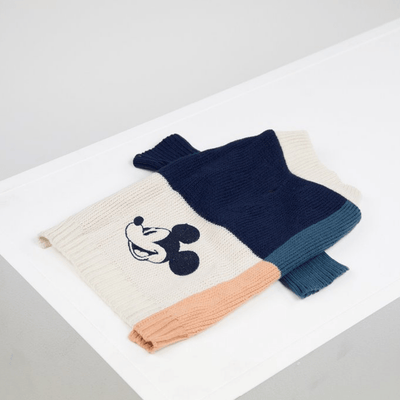 Mickey Mouse Color Blocked Jumper