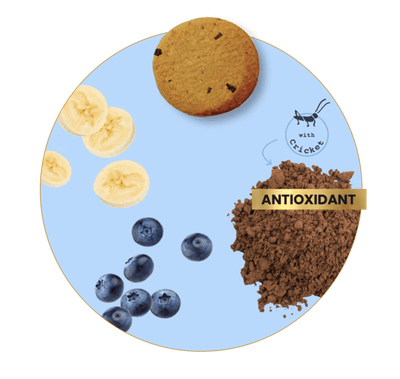 Antioxidant: Banana, Cricket & Blueberry - Dog Treats Treats Chippin