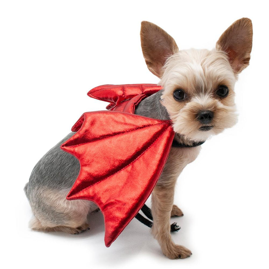 Devil Wings Dog Costume