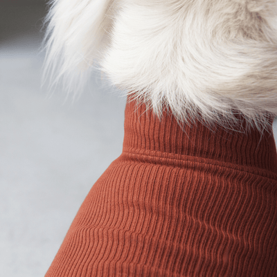 Sienna Ribbed Turtleneck