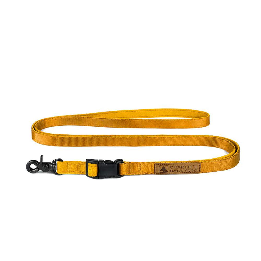 Easy Leash - Yellow