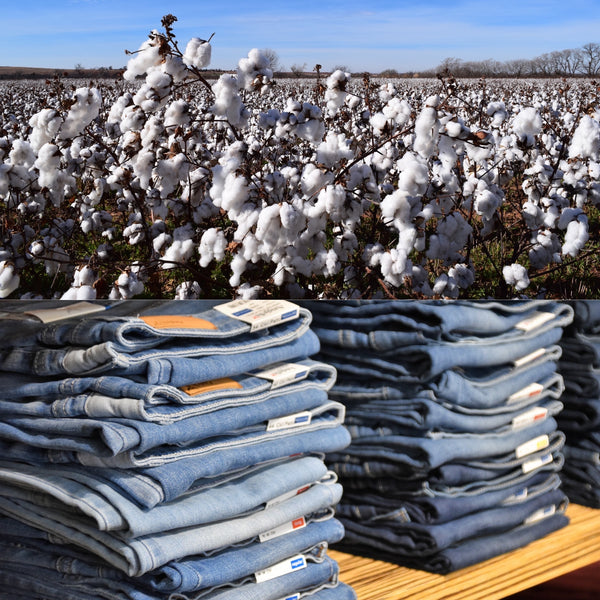 Is eco-friendly clothing made from cotton?