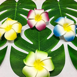 Hawaiian Party Tropical Palm Leaves Table Plate Decor