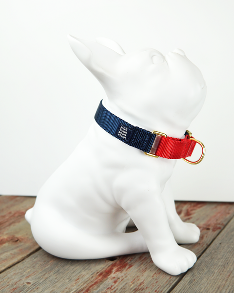 Navy & Red Martingale