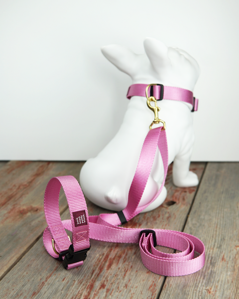Hands Free & Adjustable Leashes