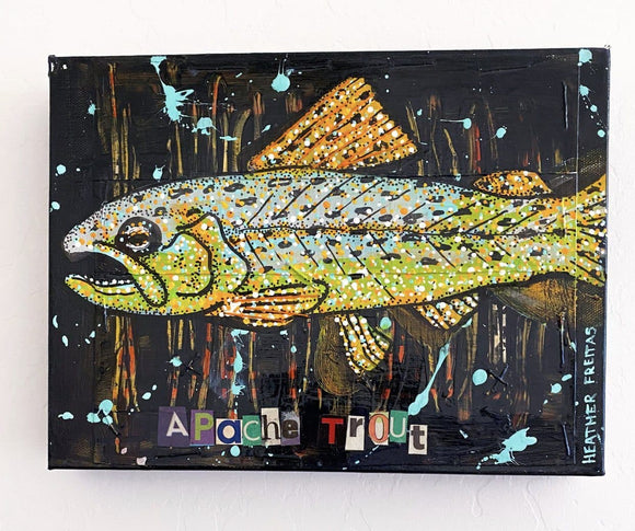 Apache Trout Heather Freitas