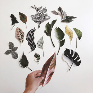 """Paper Cuts 1 - Daybreak"" by Anna Church"