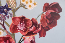 "Load image into Gallery viewer, ""Earth Orchid"" by Wendy Matenga"