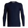 Icebreaker Men's Waypoint Crewe Sweater