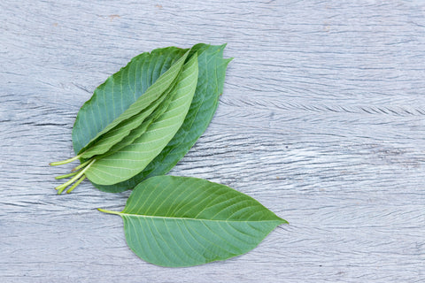 Kratom leaves on table - Kryptokratom.com