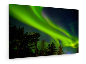 Poly Canvas Print - Northern light