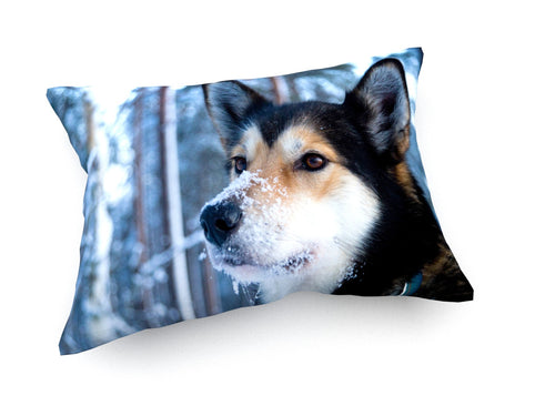 Cushion - Premium - Husky