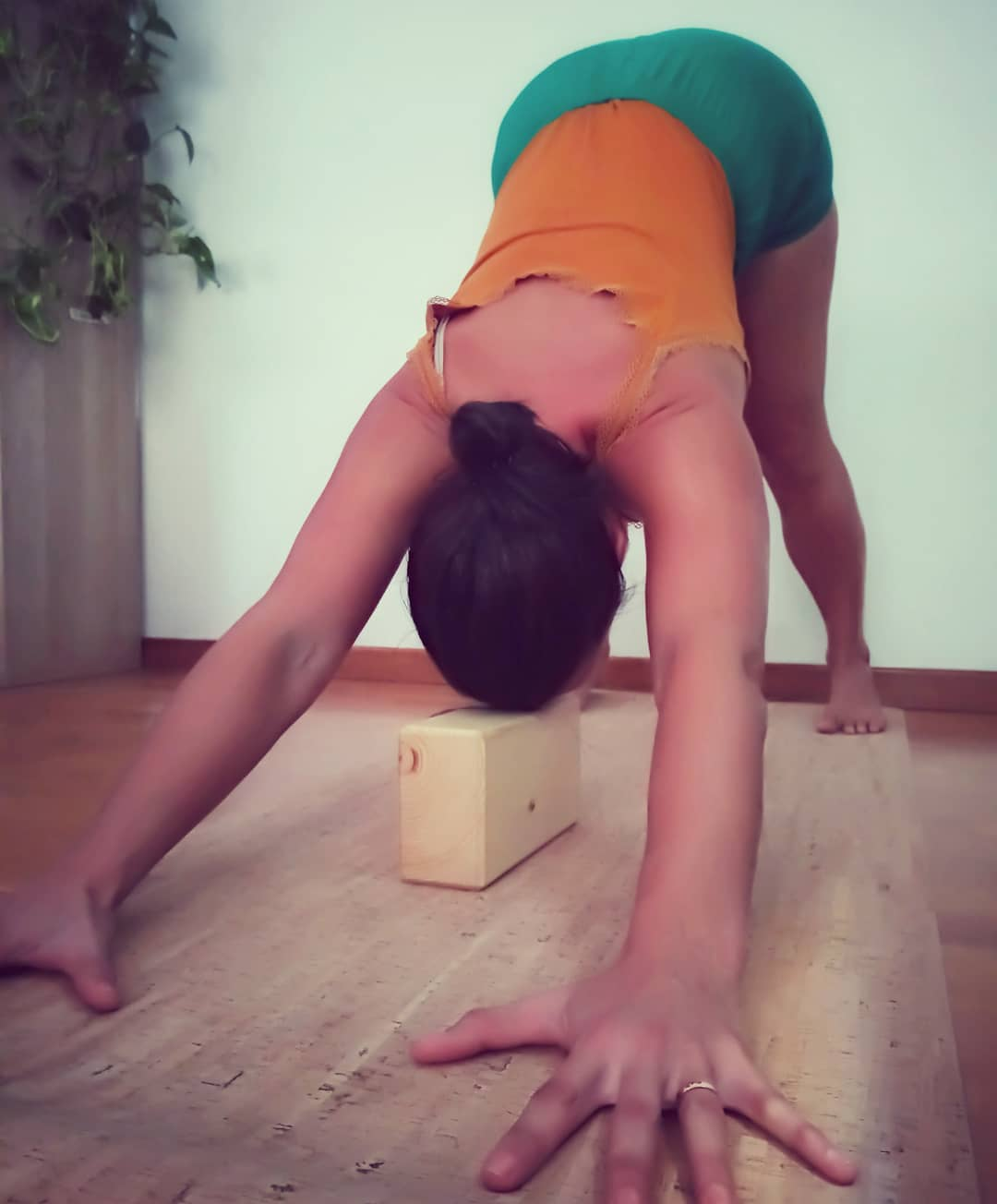 adho mukha with yoga block