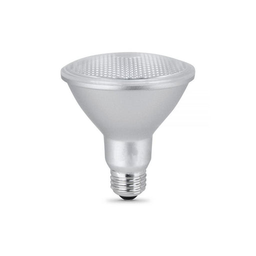 LED PAR30 Light Bulbs - step-1-dezigns