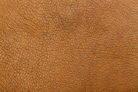 raw material of leather 7