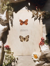 Load image into Gallery viewer, Antique Large Illustration The Copper & Brown Hairstreat Butterflies  Bookplate
