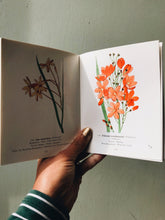 Load image into Gallery viewer, Vintage 1958 Protected Wild Flowers of the Cape Province Book