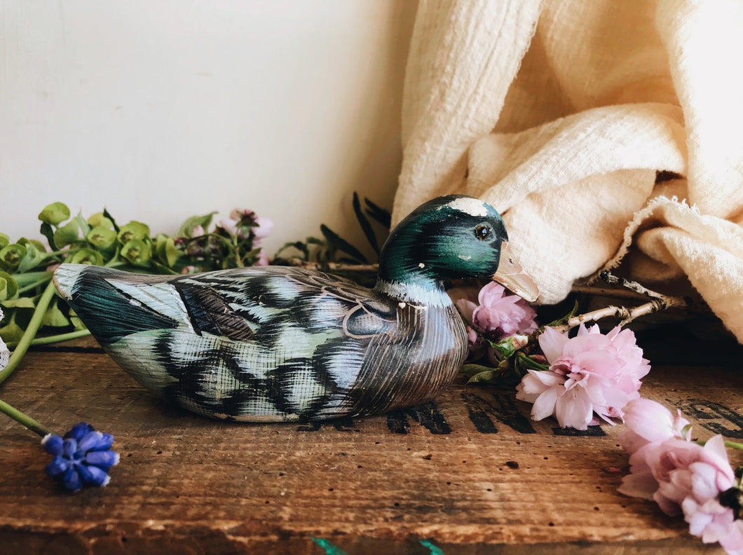 Hand carved Painted Duck