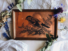 Load image into Gallery viewer, Vintage Bullfinch Copper Etching