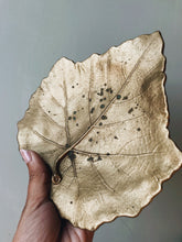 Load image into Gallery viewer, Ceramic Leaf Dish