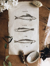 Load image into Gallery viewer, Antique Fish Etching Bookplate