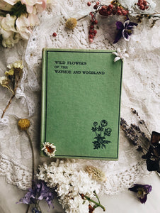 Vintage Wild Flowers of the Wayside & Woodland
