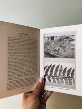 Load image into Gallery viewer, Antique 1920's Botany Books (Sold Separately)