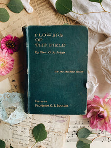 "Antique 1906 ""flowers of the field"" C.A Johns"