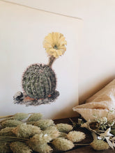 Load image into Gallery viewer, Antique Cacti Illustration Bookplate No 2