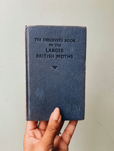 Vintage Large British Moths Observer
