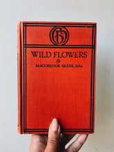 Load image into Gallery viewer, 1920's Wildflowers Book ~ McGregor Skene