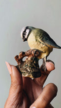 Load image into Gallery viewer, Vintage Beswick Blue Tit Bird Ornament