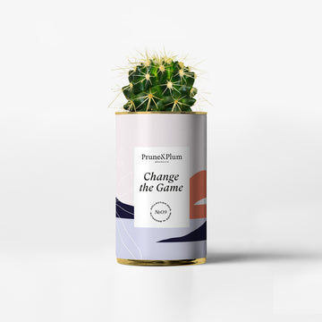 Indoor Planters - Cactus Pot Change The Game - Prune & Plum
