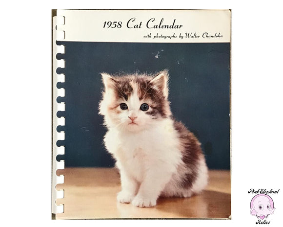 1958 Daily Cat Calendar Photography by Walter Chandoha - 1950s Retro Planner Journal w/ Photos of Cats & Kittens - Mid Century Office Kitsch