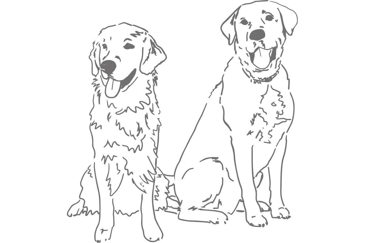Weezie B. Designs | Sketch of Golden Retrieve and Lab