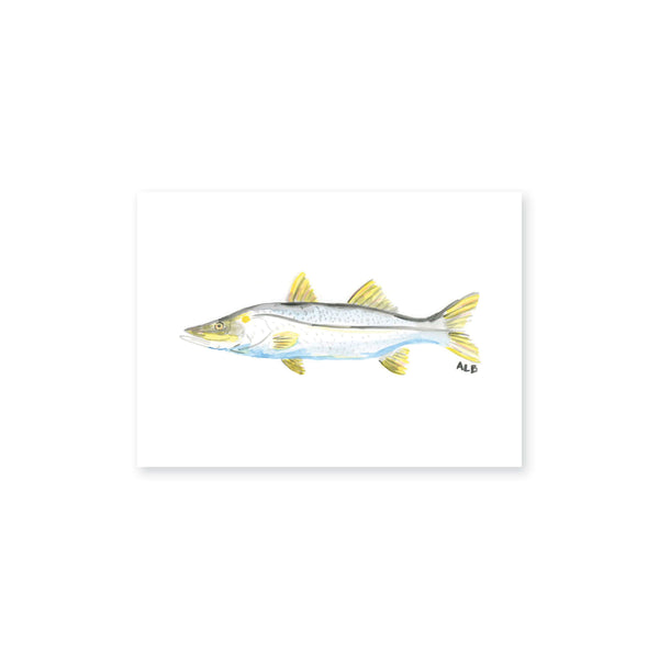 Weezie B. Designs | Watercolor Snook Art Print
