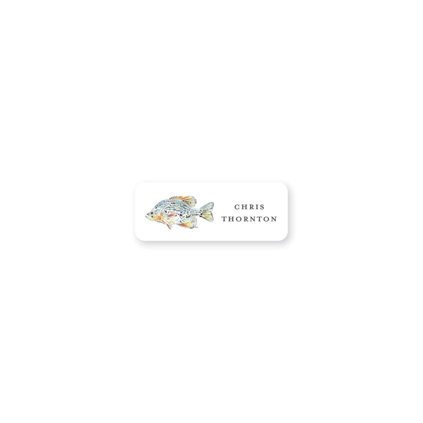 Watercolor Fish Permanent Sticker