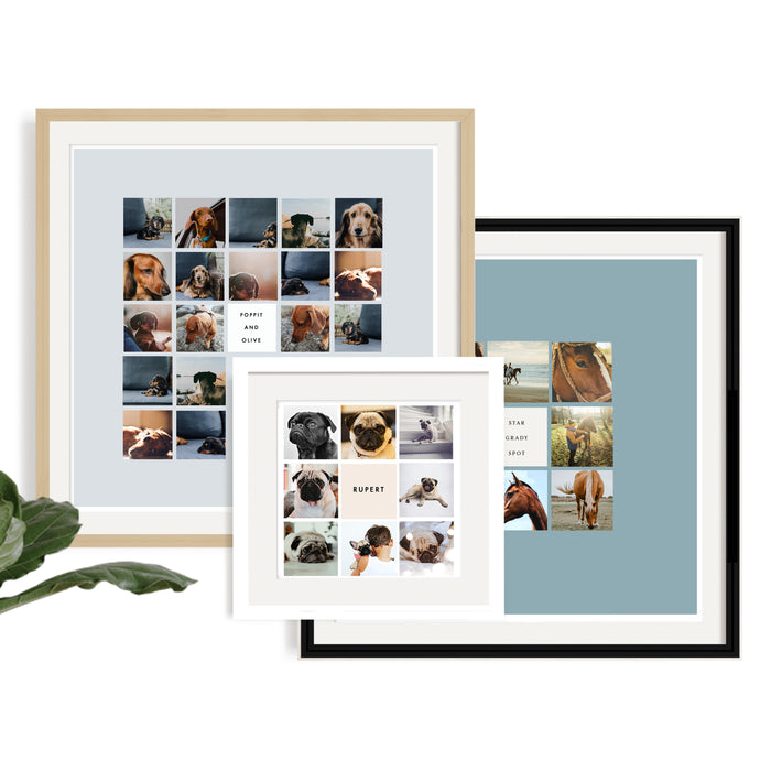 VIP - Very Important Pet Personalised Framed Print